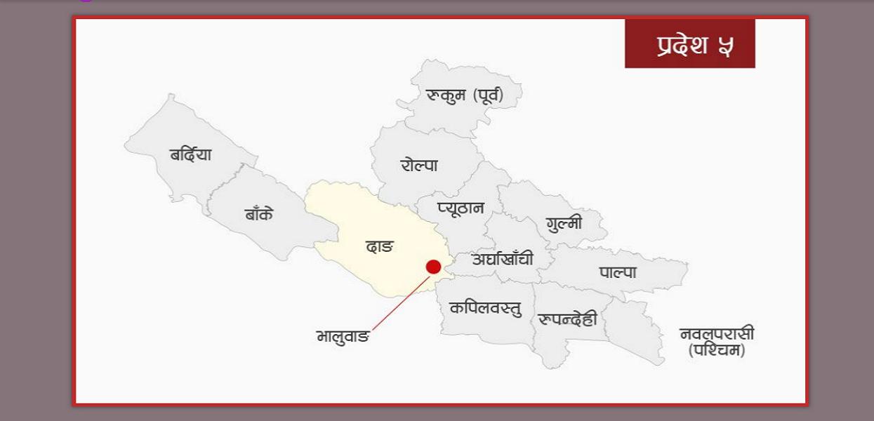 प्रदेश ५ राजधानी : दाङको पक्षमा मतदान गर्न नेकपा सांसदलाई ह्विप